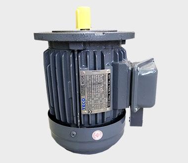 東元低壓三相電動機(SEP12)